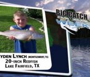 BIGCATCH3308