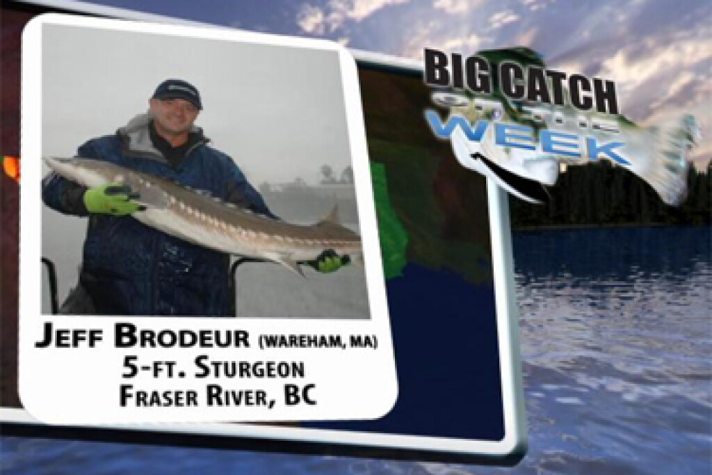 2008 Big Catch Winners