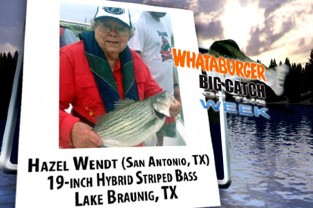 2011 Big Catch Winners