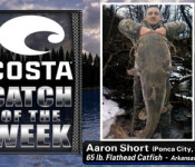Big Catch winner 3-22-12