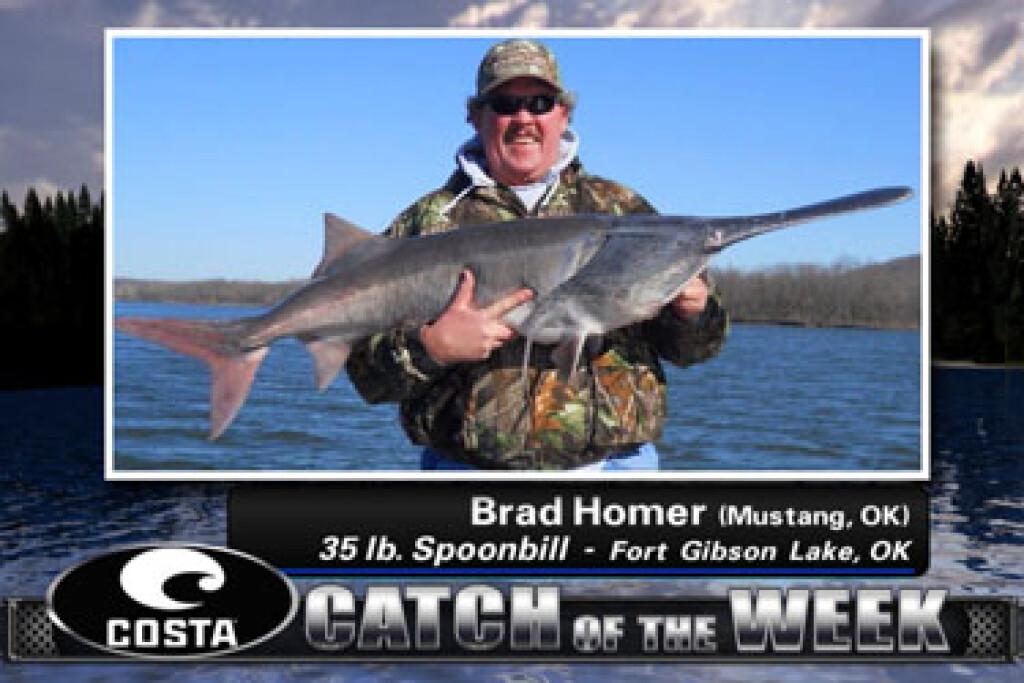 2012 Big Catch Winners