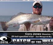 Costa Catch winner 8-16-12