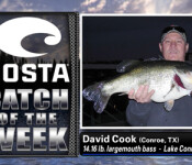 Costa Catch winner 11-15-12
