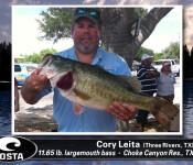 Costa Catch winner 10-24-13