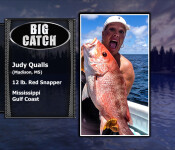 fso se big catch 8 19
