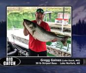 #16fso sw big catch