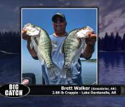 #24 sw big catch