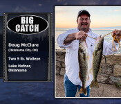27 fso big catch sw-19