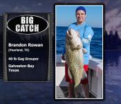 fso sw 30 big catch