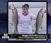 36 sw fso big catch