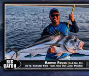 39 fso sw big catch