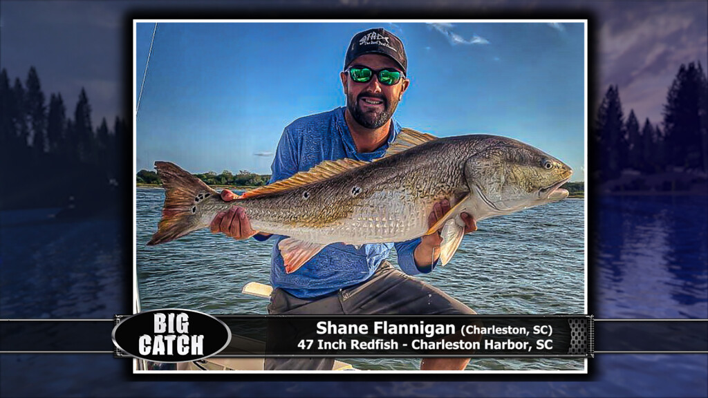 2019 Big Catch Winners SOUTHEAST